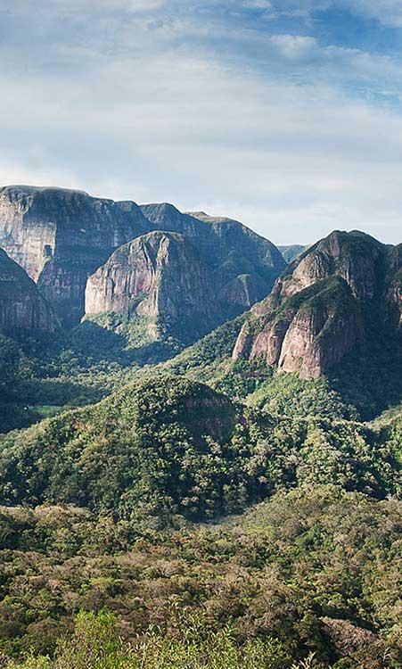 Amboro National Park Tour