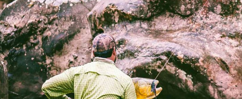 Bolivian Golden Dorado Fly Fishing Expedition Tour