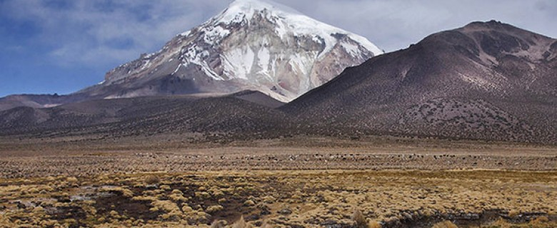 Sajama National Park 3 day