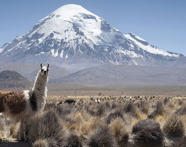 SAJAMA NATIONAL PARK 2 DAY
